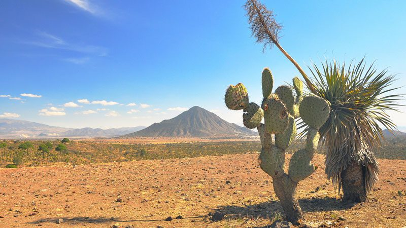North America S Favourite 9 Reasons To Visit Mexico Now