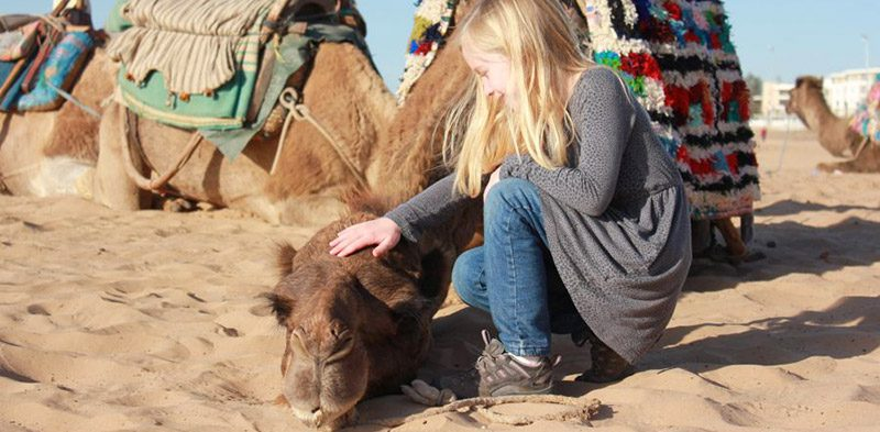 Camel and girl on Morocco Family Adventure