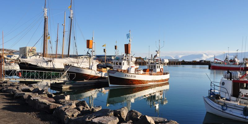 iceland -Husavik