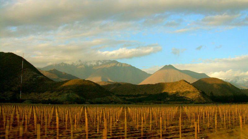 Elqui_Valley_CamilaS.Subiabre