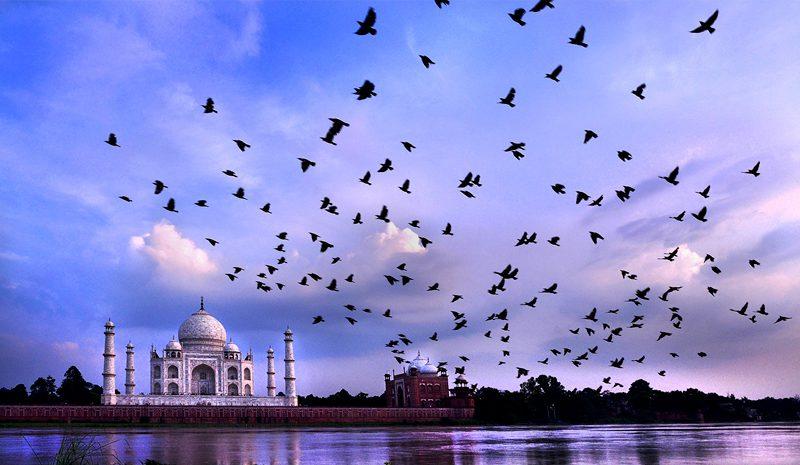 India_agra_amaing-beauty-of-the-taj_Kuntal-Kumar-Roy
