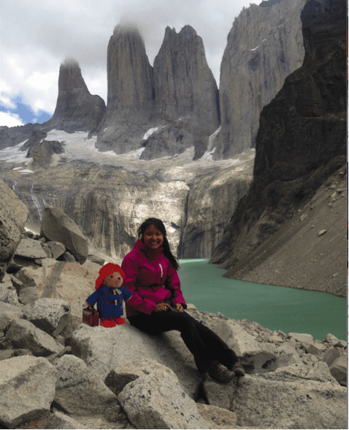 Intrepid Traveller: Paddington Bear: Getting Wild In South America