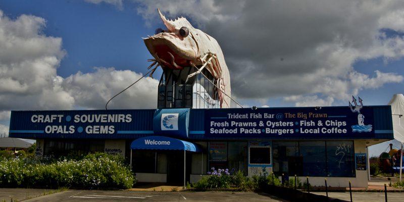 big prawn - credit Jack Zalium