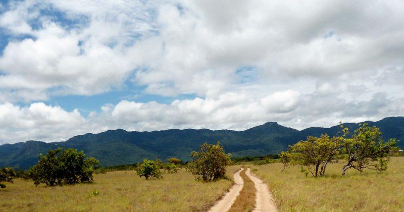 guyana guide tours - Anna M