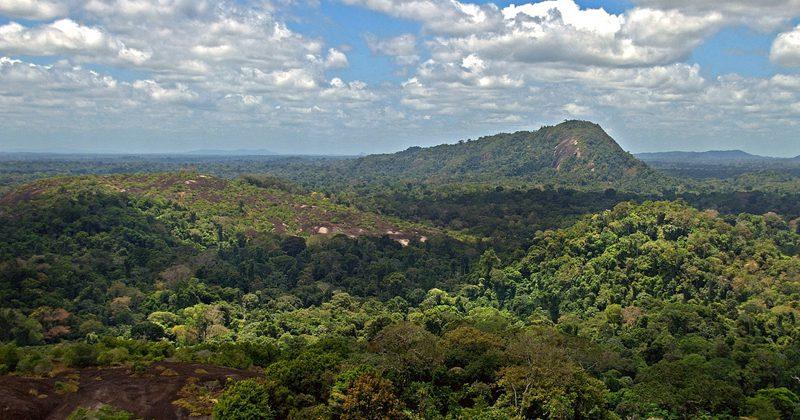 guyana guide tours -David Evers
