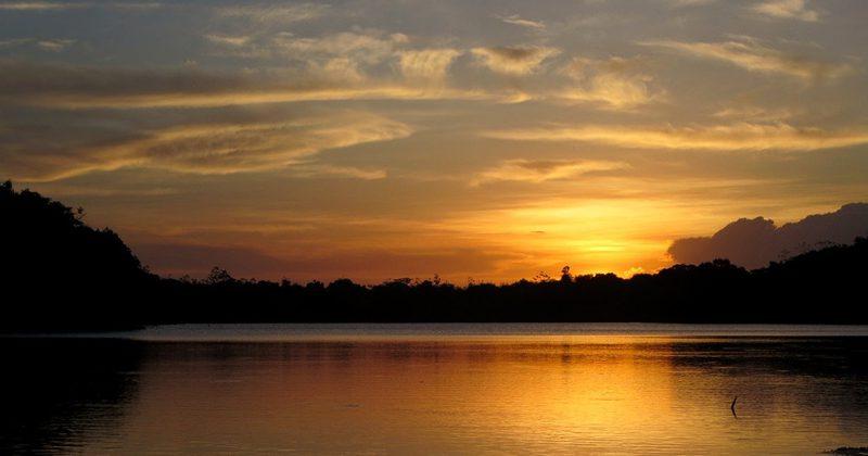 guyana guide tours -David Stanley3
