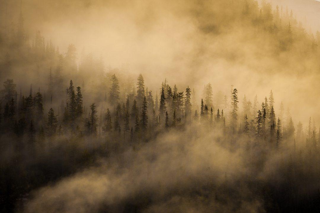 Tunnel Mountain, Alberta - Callum Snape