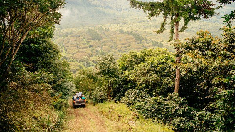 El Salvador - Driving through coffee country on the Ruta de Las Flores. Image Stuart, Flickr