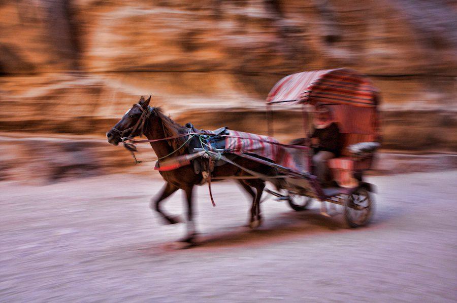 Petra horse Cart by Sherry Ott