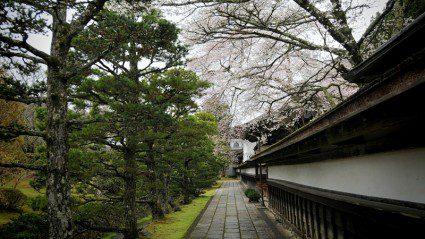 Monk life: what to expect from your Japanese monastery stay