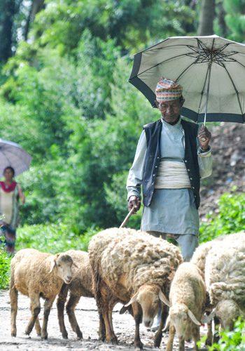 Nepal-7