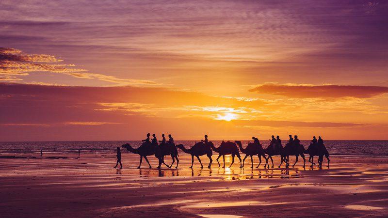 cable-beach-camels---credit-Josh-Janssen