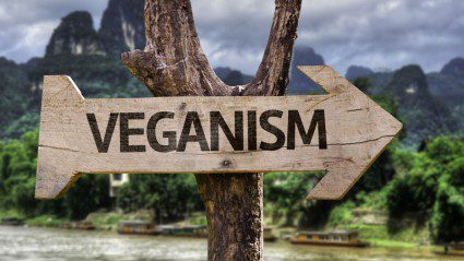 Travelling as a vegan? These are the 7 countries to visit