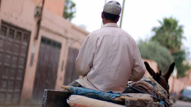 life---morocco---dana-mcmahan