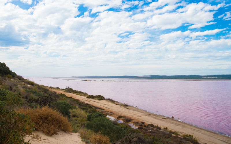 pinnacles---pink-lake-port-gregory