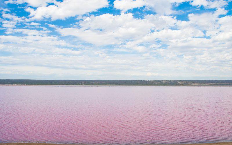 western-australia---pink-lake-