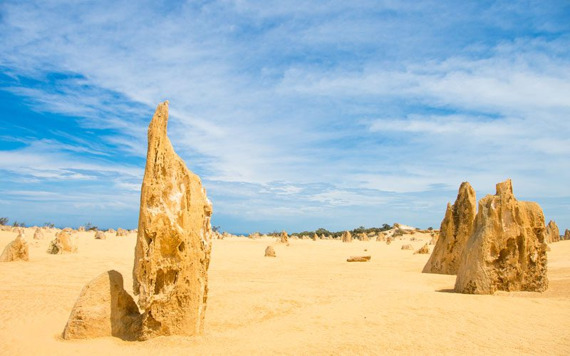 western-australia---pinnacles-honeycomb
