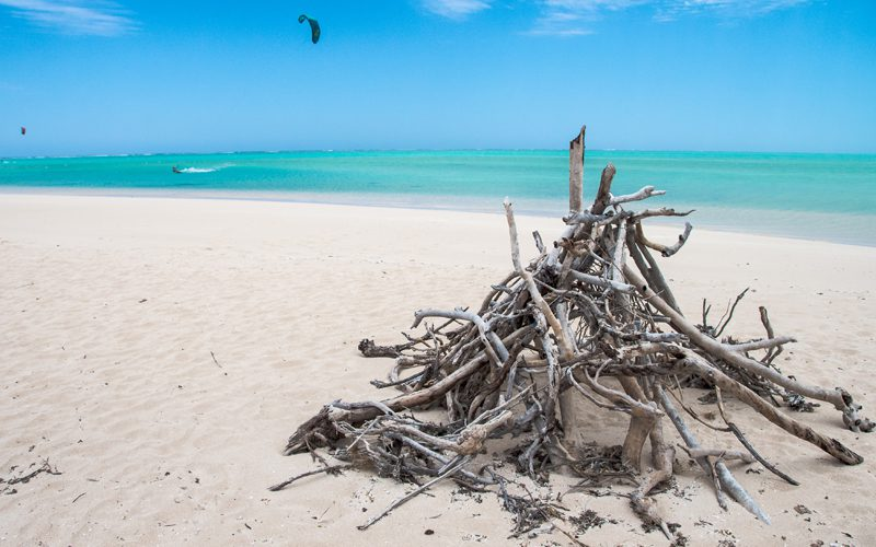 Cape Range -driftwood-stacked-for-a-bonfire-at-sandy-bay