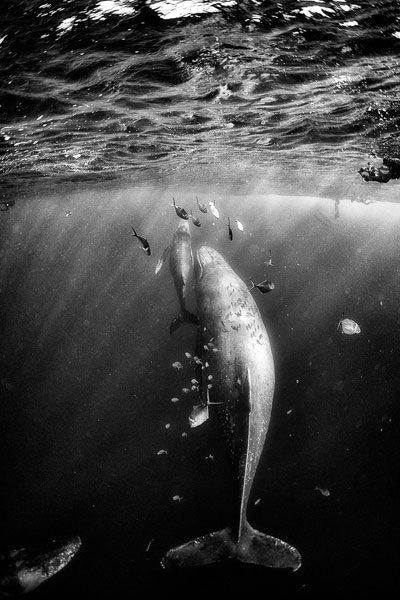 travel-photographer---anuar-11