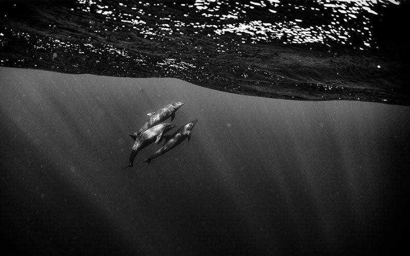travel-photographer---anuar-4