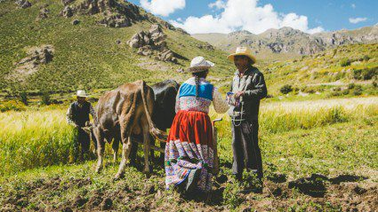 What it's like to do a homestay in the Peruvian Andes