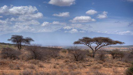 Machame or Marangu? We ask a Leader which Kilimanjaro route is best