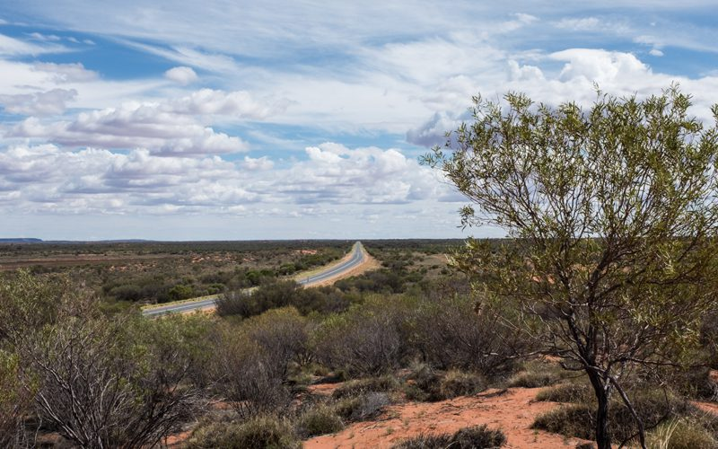 red centre -family---oliver-pelling-2