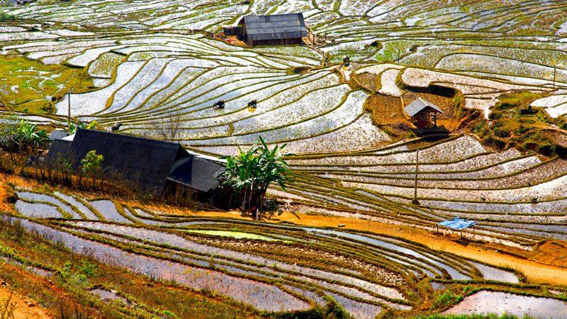 hmong---J-Duval