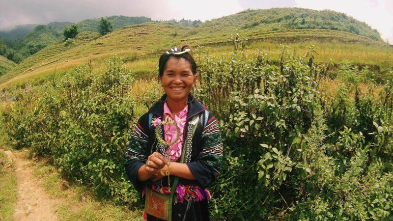hmong---la
