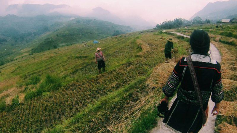 hmong---sapa-hills