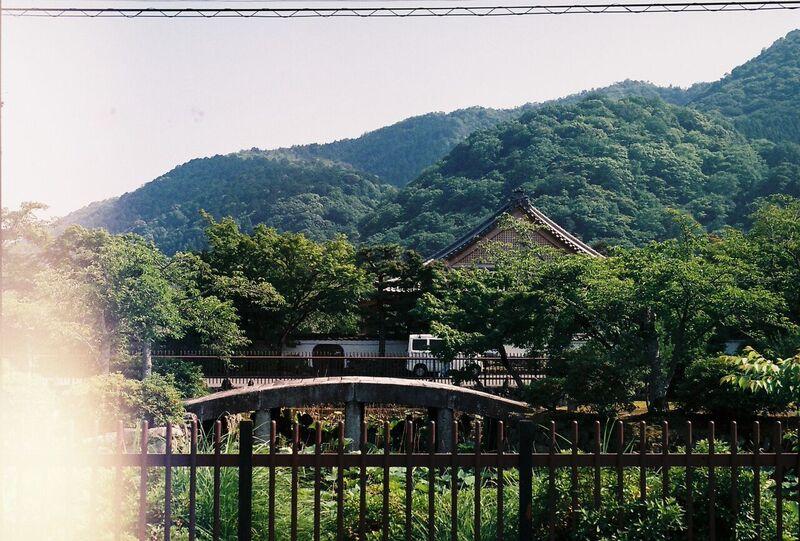 Japan bridge on film - Gemma Saunders