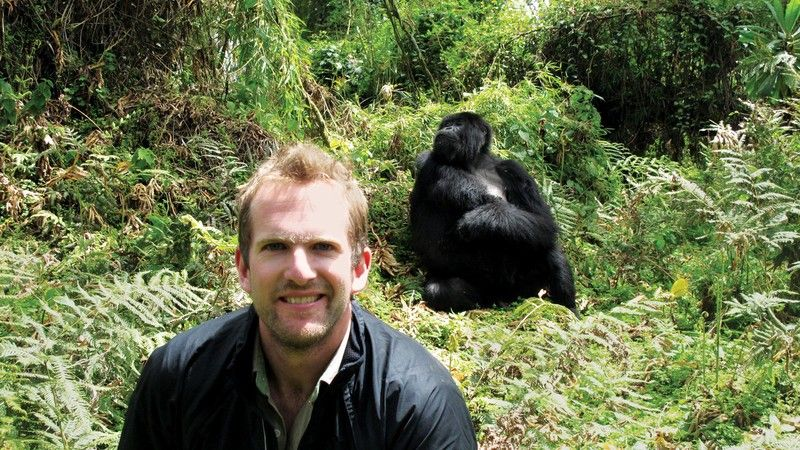 A man and a mountain gorilla in Rwanda