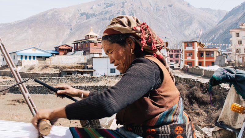Nepal-monsoon-local---Common-Wanderer