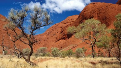 4 things to discover in Australia's Red Centre