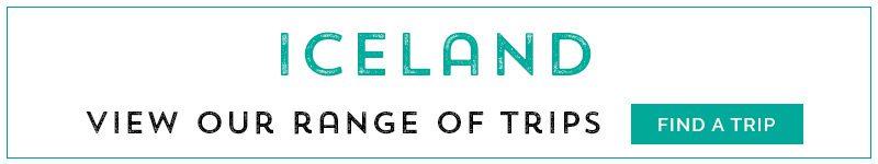 iceland-trip4