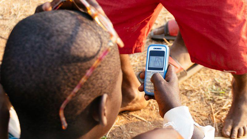 africa-phones-common-wanderer