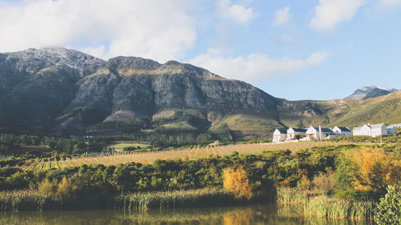 cape-town-south-africa-wine-common-wanderer