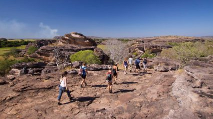 Behind the scenes on a Kakadu group tour