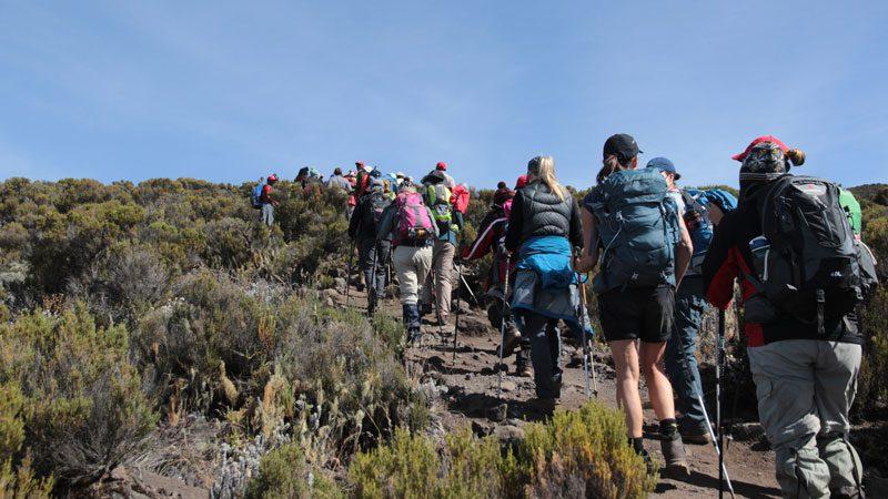 kilimanjaro-group-trek-2-amy-bolger