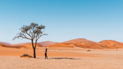A journey through Sossusvlei, Namibia