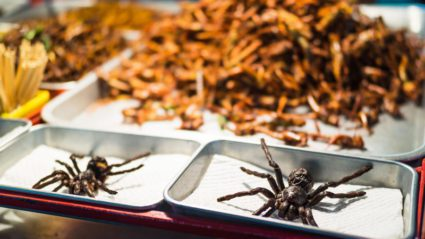 Eating spiders in Cambodia. Gimmick or gourmet?