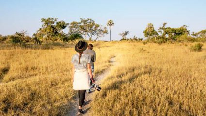 Chobe vs Okavango: Which one should you choose?
