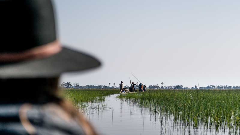 okavango-np-mokoro-river-the-common-wanderer