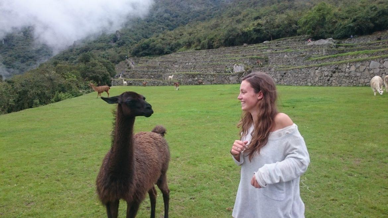 865056954 What I wish I knew before hiking to Machu Picchu