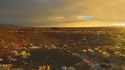 It's official: Kenya is banning plastic bags