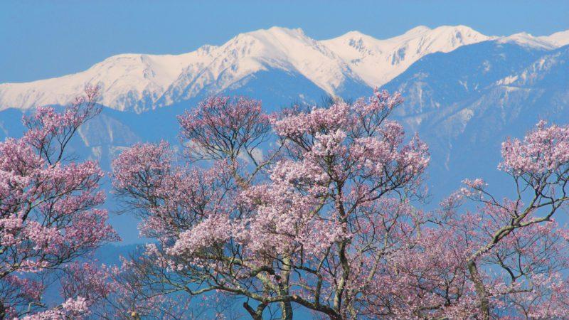 Mt Takao, Tokyo Japan