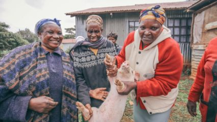 How a local group is fighting poverty in Kenya, one pig at a time