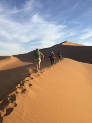 Travellers trek across the sand dunes in the Sahara