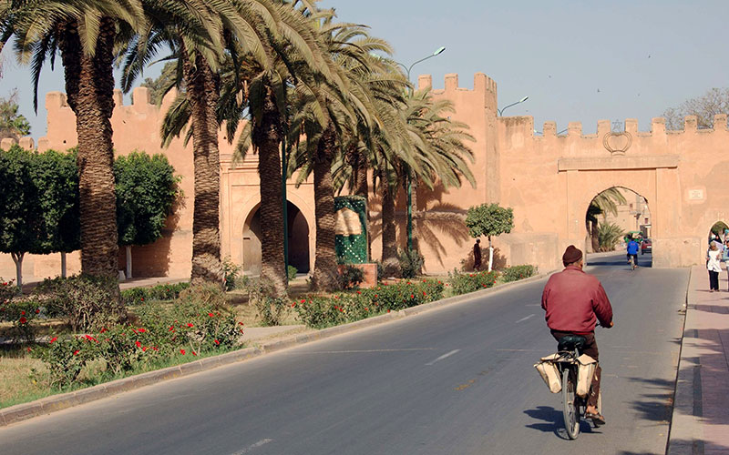 The city walls of Taroudant, south Morocco