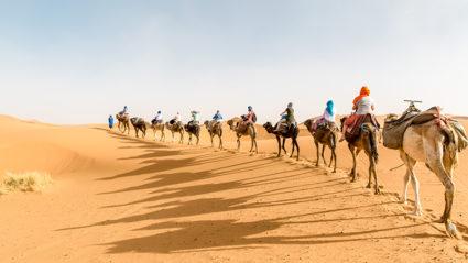Much more than a desert: A trip into the Sahara